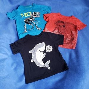 4/$24 - 3 Carter's 6 Month T-shirts